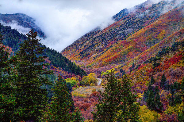 Photograph - Autumn In The Middle by Dustin  LeFevre