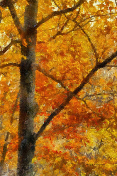 Wall Art - Photograph - Autumn In The Tree Stand 02 by Thomas Woolworth