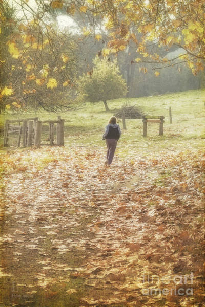 Photograph - Autumn In The Valley by Elaine Teague