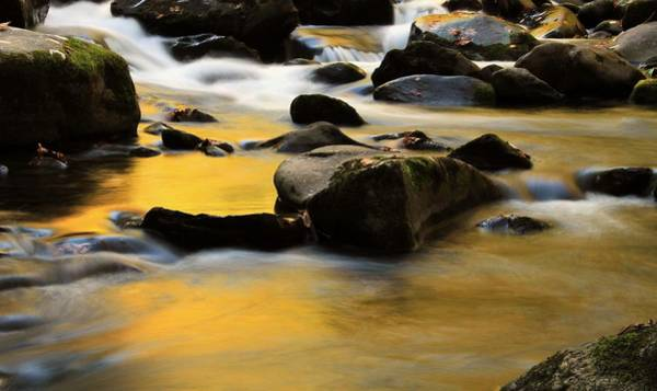The Great Smoky Mountains Wall Art - Photograph - Autumn In The Water by Dan Sproul