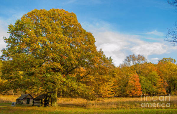 Photograph - Autumn In Valley Forge 2 by Rima Biswas
