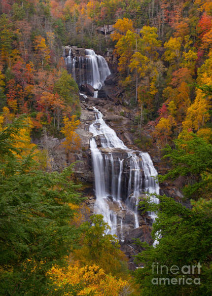 Whitewater Falls Photograph - Autumn In Whitewater Falls by Bridget Calip