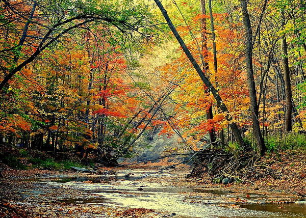 Paisaje Photograph - Autumn In Wonderland by Frozen in Time Fine Art Photography