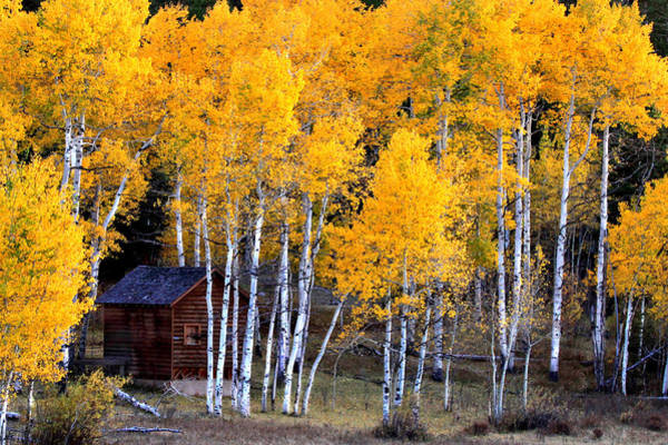 Photograph - Autumn Inn by Darryl Wilkinson