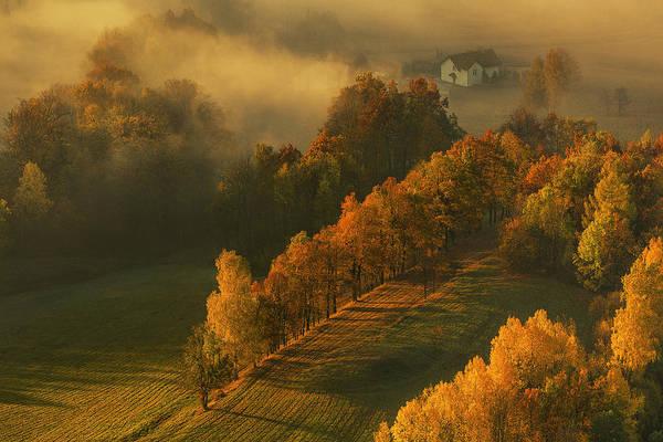 Autumn Foliage Wall Art - Photograph - Autumn by Izabela Laszewska-mitrega/darek Mitr?ga