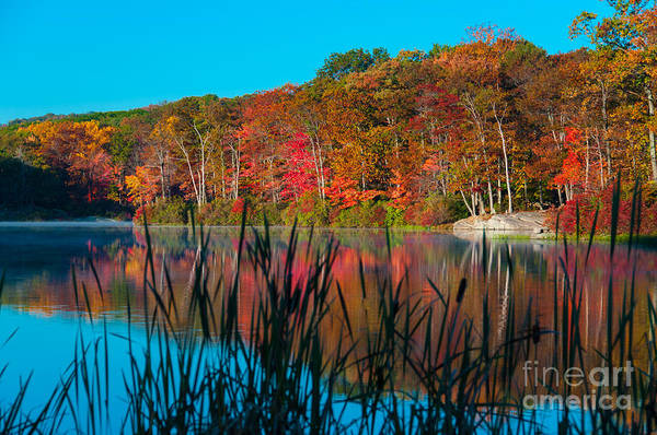 Photograph - Autumn Lake by Anthony Sacco