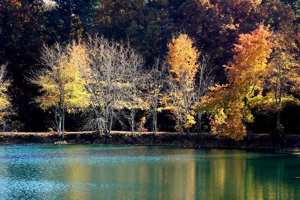Photograph - Autumn Lake Reflections by Lesa Fine