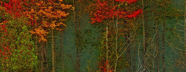 Photograph - Autumn Landscape by David Patterson