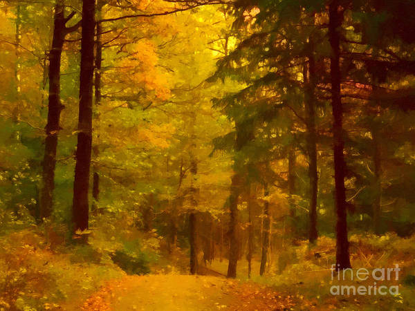 Autumn Lights Art Print by Lutz Baar