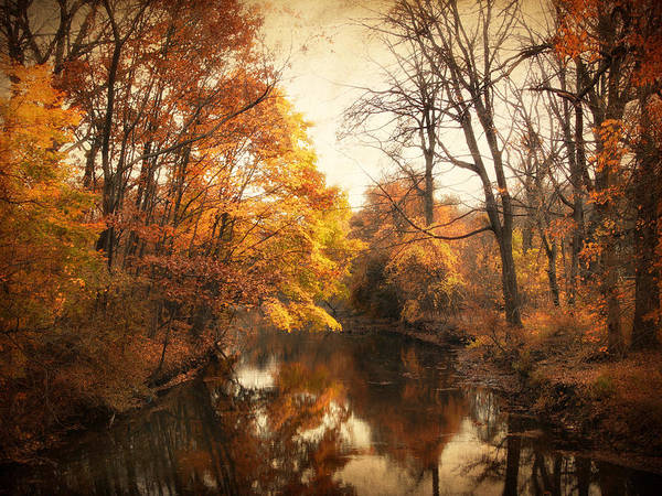 Wall Art - Photograph - Autumn Lingers by Jessica Jenney