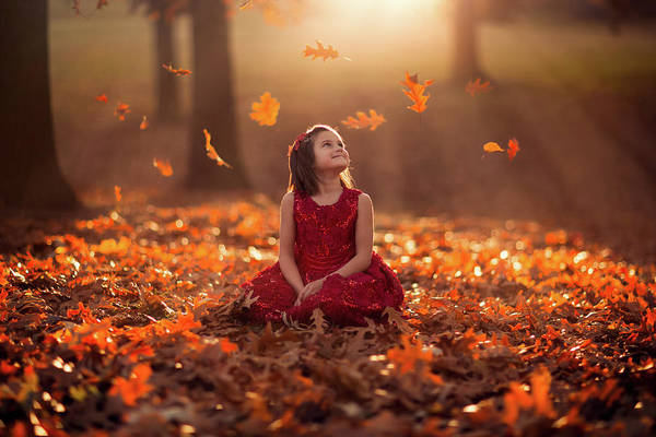Nebraska Photograph - Autumn Magic by Jake Olson