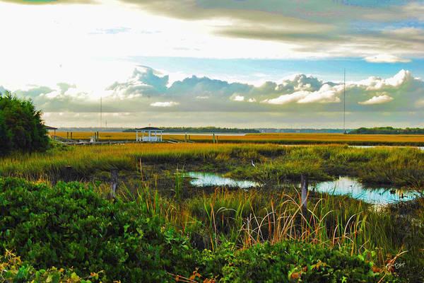 Photograph - Autumn Marsh - Sullivans Island by Paulette B Wright
