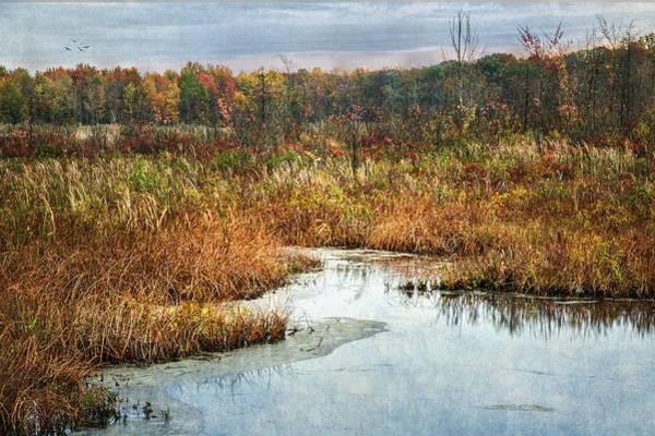 Photograph - Autumn Marshland by Dale Kincaid
