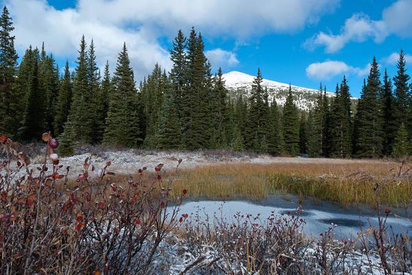 Photograph - Autumn Meets Winter by Cascade Colors