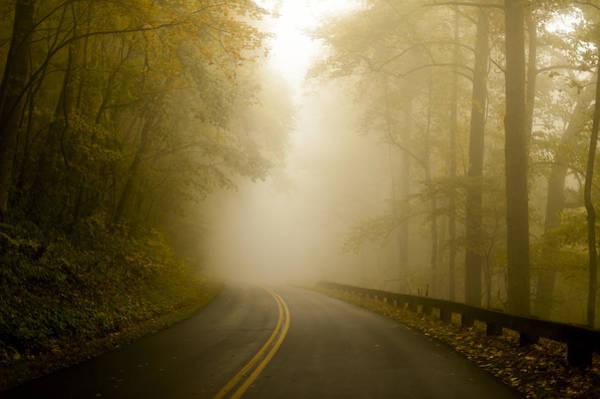 Autumn Mist Blue Ridge Parkway Art Print
