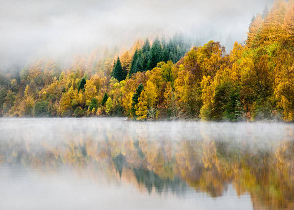 Wall Art - Photograph - Autumn Mist by Dave Bowman