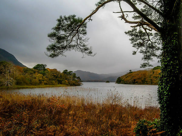 Photograph - Autumn Mist On Muckross Lake by James Truett