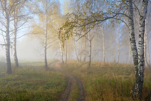 Wall Art - Photograph - Autumn Mood by Sergey Romanchuk