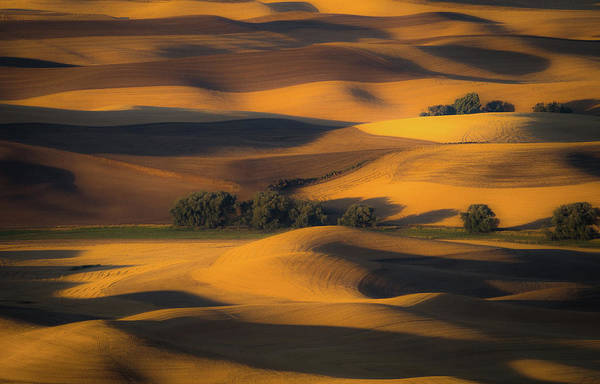 Wheat Wall Art - Photograph - Autumn Of Rolling Hills by Eunice Kim