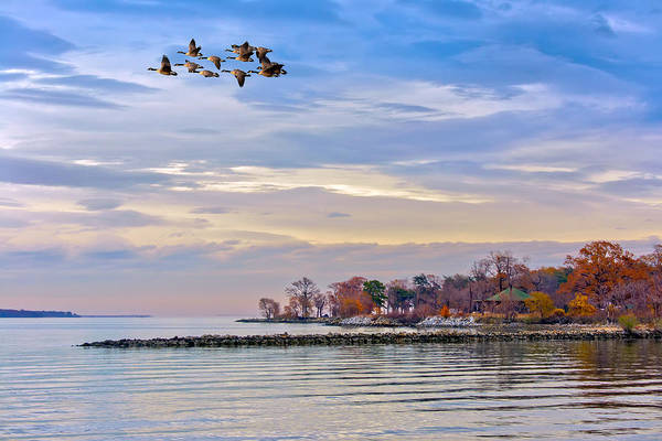 Photograph - Autumn On The Chesapeake Bay by Patrick Wolf