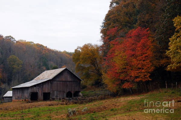 Photograph - Autumn On The Farm by Larry Ricker