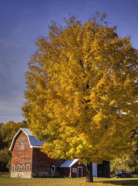 Photograph - Autumn On The Farm by Thomas Young