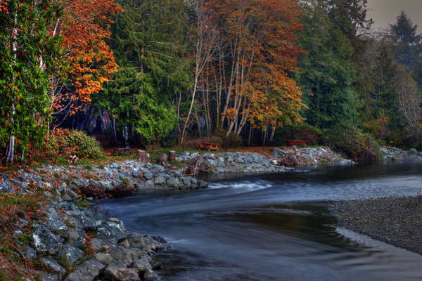 Photograph - Autumn On The Little Qualicum by Randy Hall