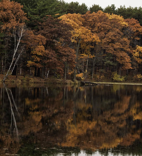 Wall Art - Photograph - Autumn On The Point by Thomas Young