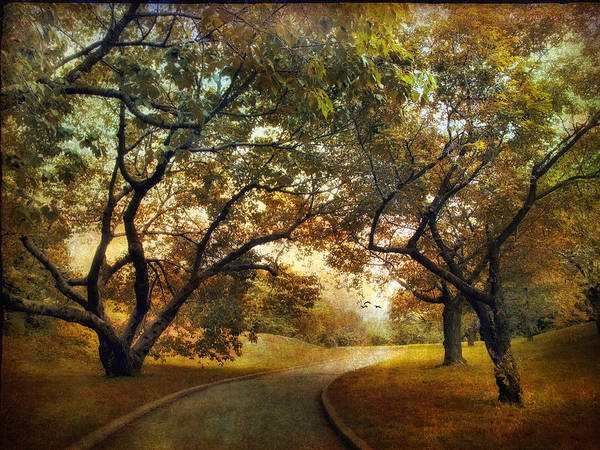 Orchard Photograph - Autumn Orchard by Jessica Jenney