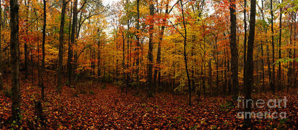 Photograph - Autumn Panorama by Larry Ricker