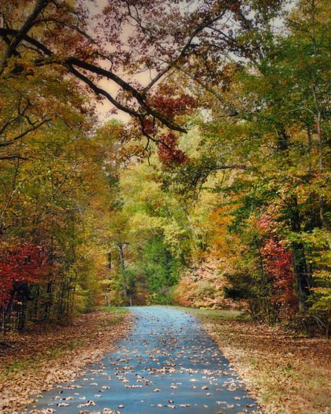 Photograph - Autumn Passage 3 - Fall Landscape Scene by Jai Johnson