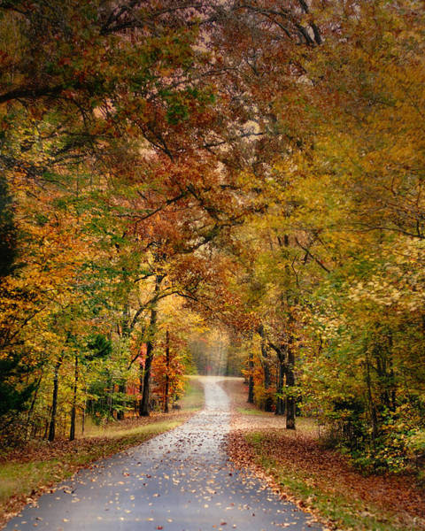 Photograph - Autumn Passage 4 - Fall Landscape Scene by Jai Johnson