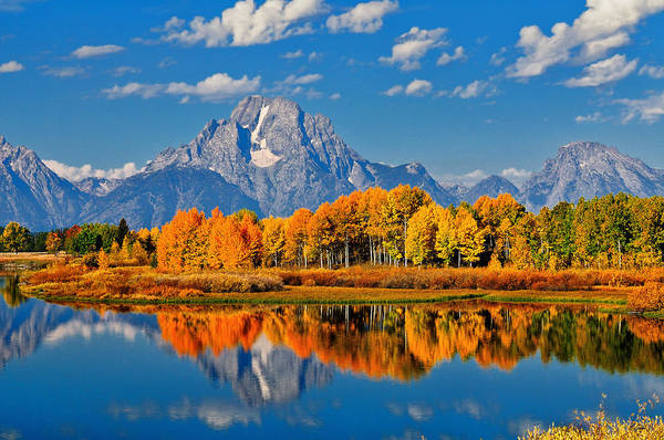 Photograph - Autumn Peak At Oxbow Bend by Greg Norrell