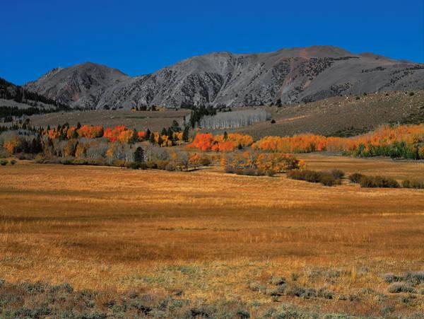 Photograph - Autumn Range by Paul Breitkreuz