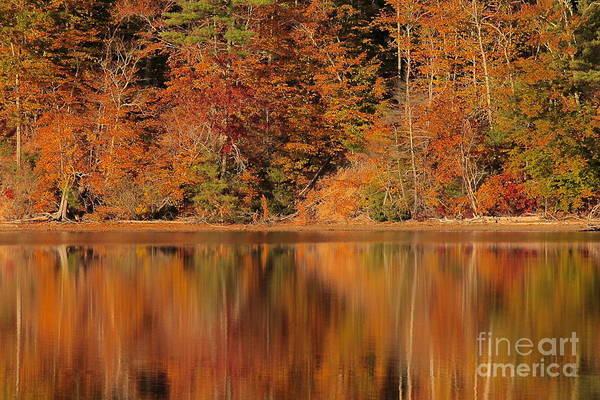 Photograph - Autumn Reflection  by Amazing Jules