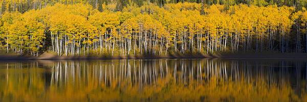 Photograph - Autumn Reflection by Dustin  LeFevre