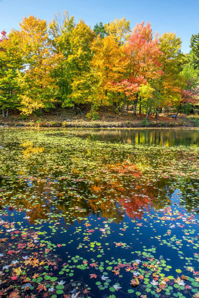Photograph - Autumn Reflection In Sherbrooke Quebec by Pierre Leclerc Photography