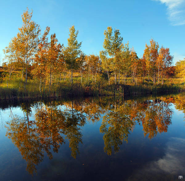 Photograph - Autumn Reflection by John Meader