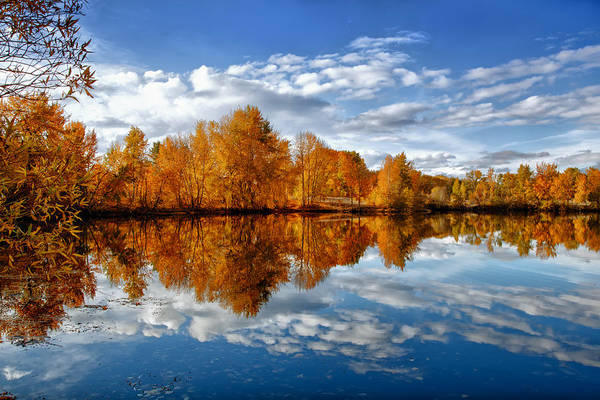 Photograph - Autumn Reflection by Mary Jo Allen