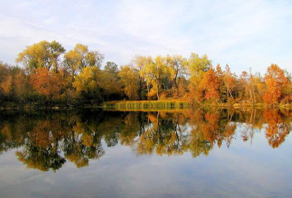 Photograph - Autumn Reflections by AJ  Schibig