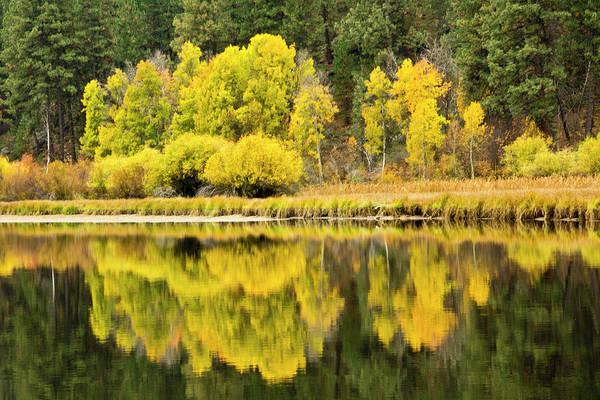 Deschutes River Photograph - Autumn Reflections, Aspen Camp by Michel Hersen