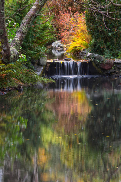 Photograph - Autumn Reflections by Carrie Cole