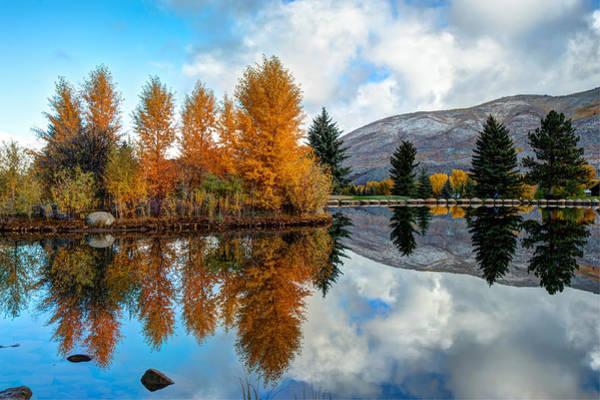 Photograph - Autumn Reflections In Aspen Colorado by Gregory Ballos