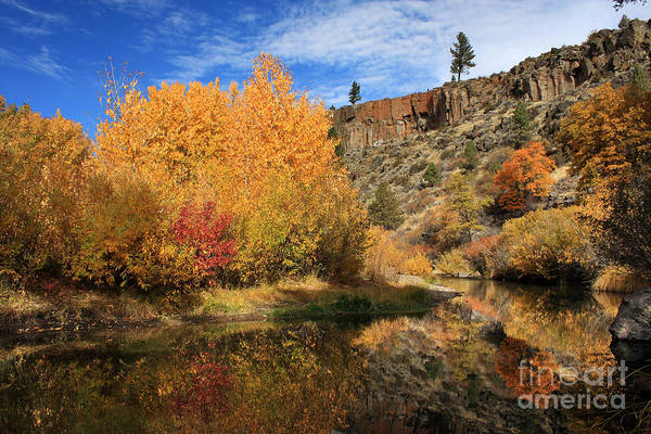 Wall Art - Photograph - Autumn Reflections In The Susan River Canyon by James Eddy