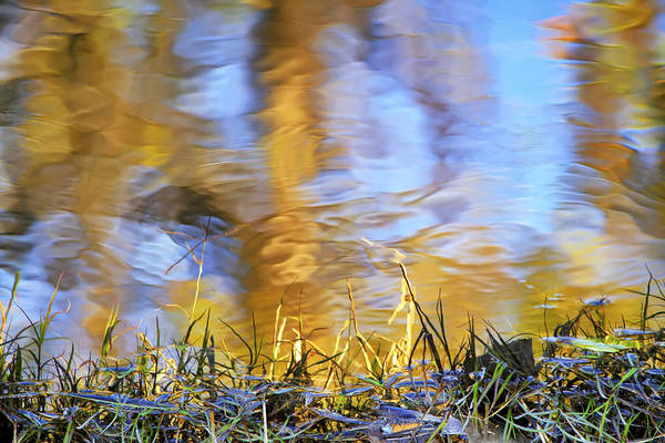 Photograph - Autumn Reflections by Jason Politte