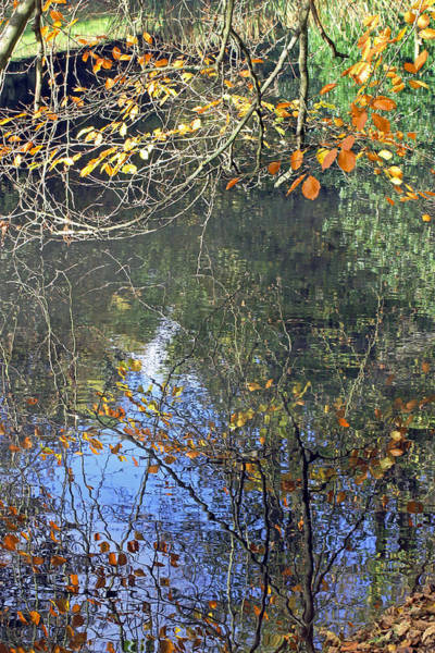 Photograph - Autumn Reflections by Tony Murtagh