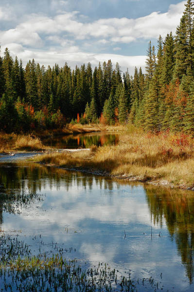 Photograph - Autumn Reflections by Trever Miller