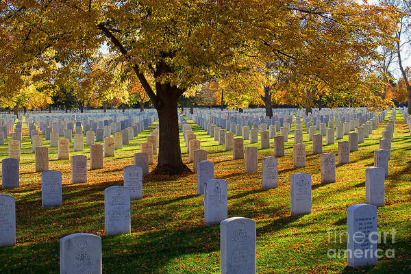 Photograph - Autumn Remembrance by Jim Garrison