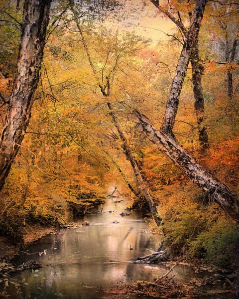 Photograph - Autumn Riches 1 by Jai Johnson