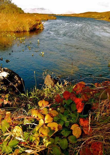 Photograph - Autumn River by HweeYen Ong